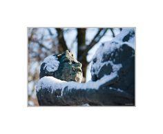 """Bronzen beeld van een man met een grote kool (Boeskoolmenneke). Kunstenaar was Jan Kip (Oldenzaal 1926-Oldenzaal 1987) beeldhouwer en edelsmid. Oldenzaal wordt ook wel de Boeskoolstad genoemd. Deze naam dankt de stad en haar inwoners aan het boeskoolmenneke. Vroeger werd door de plaatselijke bevolking de """"boeskool"""" (witte kool) veelvuldig op het land verbouwd en op de markten in omliggende steden aangeboden of als betaalmiddel gebruikt."""