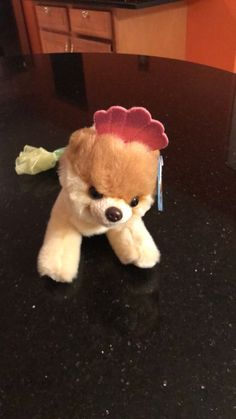 9520d7ee2e0 Used Brown and white dog plush toy for sale in Carol Stream - letgo Carol  Stream