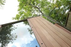 Simple elegant design echoing the verticality of trees.
