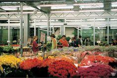 Neu im Gartennetz: Stellenangebote aus der Grünen Branche. Wir ermöglichen es Ihnen hier kostenlos Angebote und Gesuche einzustellen