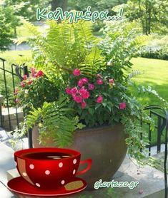 Καλημέρα ...giortazo.gr - Giortazo.gr Good Morning Good Night, Plants, Sayings And Quotes, Plant, Planets