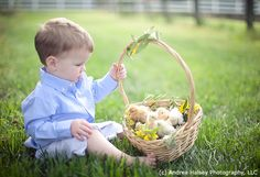 kids and baby chick portraits - Google Search