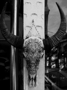 Amazing carved water buffalo skull