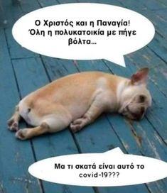 Το χιούμορ σκοτώνει... την απαγόρευση κυκλοφορίας [εικόνες] | in.gr Funny Greek Quotes, Funny Picture Quotes, Funny Quotes About Life, Funny Photos, Haha Funny, Funny Texts, Funny Dogs, Lol, Funny Vines