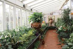 Three Glorious Garden Centres