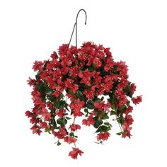 House of Silk Flowers Artificial Watermelon Red Bougainvillea Hanging Basket -- You can get additional details at the image link. (This is an affiliate link) Small Artificial Plants, Artificial Orchids, Fake Plants, Artificial Hanging Baskets, Faux Flowers, Silk Flowers, Colorful Flowers, Hanging Flowering Plants, Indoor Plants