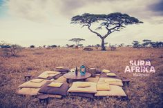 At Pumzika Classic Safari Camp you can finish your safari with the most amazing sundowner, at the most amazing location. Ever dreamt of acacias and sunsets? Come to enjoy it with us...  #SuraAfrika luxury travels everywhere. #luxurysafaricamps #luxurytravels #safari #Africansafari #Africa