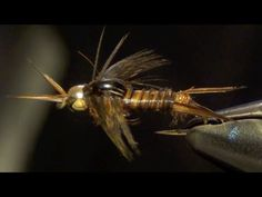Poxyback Microstone Stonefly Nymph Fly Tying Video :) Instructions and Directions