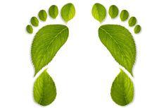 ¿Qué pasa si tenemos una gran huella ecológica?