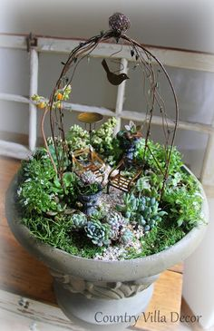 COUNTRY VILLA DECOR: Succulent Mini-Gardens