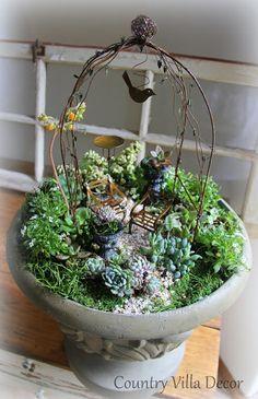 COUNTRY VILLA DECOR: Succulent Mini-Gardens