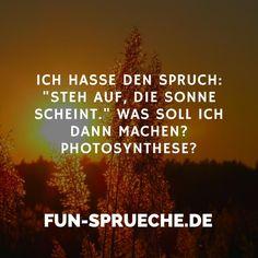 """Ich hasse den Spruch: """"Steh auf, die Sonne scheint."""" Was soll ich dann machen? Photosynthese? http://www.fun-sprueche.de/ich-hasse-den-spruch-steh-auf-die-sonne-scheint-was-soll-ich-dann-machen-photosynthese-4947"""