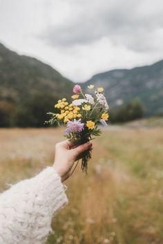 Wild flowers little bouquet Wild Flowers, Beautiful Flowers, Flowers Nature, Exotic Flowers, Field Of Flowers, Nature Pictures Flowers, Wallpaper Nature Flowers, Tropical Flowers, Green Flowers