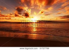 Yahya Idiz  http://www.bigstockphoto.com/image-31727789/stock-photo-beautiful-tropical-sunset-on-the-beach  http://www.bigstockphoto.com/profile/idizimage/     https://twitter.com/#!/idizimage  https://www.facebook.com/people/Yahya-Idiz/100000781651571  http://www.dreamstime.com/Idiz_info  http://www.photoxpress.com/search-stock-photos-photographer/Yahya+Idiz/861556  http://www.shutterstock.com/cat.mhtml?sort_method=popular_id=90057  http://de.fotolia.com/p/209339
