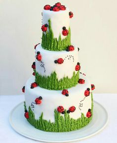 Over 30 Awesome Cake Ideas! Over 30 Awesome Cake Ideas!,Cakes and CupCakes Ladybug Cake…adorable! Fancy Cakes, Cute Cakes, Pretty Cakes, Beautiful Cakes, Amazing Cakes, Fondant Cakes, Cupcake Cakes, Bug Cupcakes, Fondant Bow