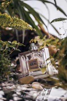 Product photography idea with Guerlain Parfums – bestcosmetics. Photography Themes, Outdoor Photography, Nature Photography, Product Photography, Lightroom, Photoshop, Advertising Photography, Commercial Photography, Parfum Guerlain