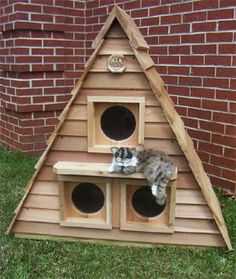 Cat Cottage Triplex | need to see what I can do with my dollhouse