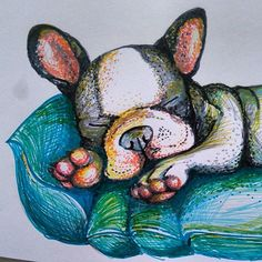 #frenchie #drawing #puppy #frenchbulldog #colorful #cute #sleeping
