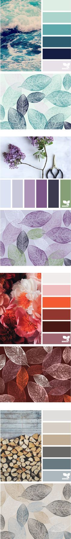 Announcing my new color class! Enter the colorful world of Design Seeds, and lea., my new color class! Enter the colorful world of Design Seeds, and learn my process for using color inspired by the seasons in Inspired Colo. Colour Pallette, Colour Schemes, Color Combos, Ocean Color Palette, Color Balance, Color Theory, House Colors, Color Inspiration, Pantone