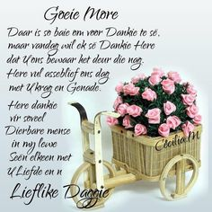 Good Night Wishes, Good Morning Good Night, Day Wishes, Good Morning Images, Good Morning Quotes, Greetings For The Day, Evening Greetings, Good Morning Greetings, Afrikaanse Quotes