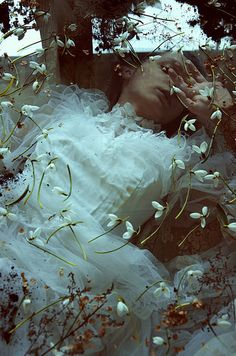 Don Winslow, Southern Gothic, Rose Photos, Underwater Photography, Dark Fantasy, Character Inspiration, Writing Inspiration, Ethereal, Bunt