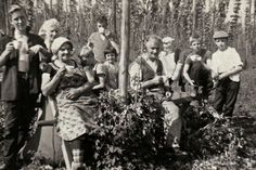 Mr and Mrs Gallager and grand children from Westport St,Stepney in the hop gardens ofFences Farm,Five Oak Green,Kent in 1958