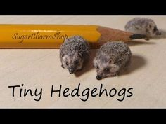 ▶ Tiny Cute Hedgehog Polymer Clay Tutorial - Bonus Video :) - YouTube