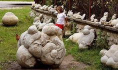 Trovants-growing stones    Trovants are found in Romania at two locations in Vâlcea County- the first location is a sand quarry before the entry in Costeşti village while the second location, which is a more spectacular one, is along Gresarea...