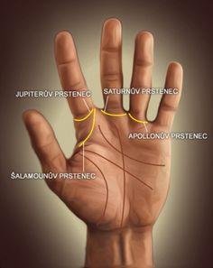 Čtení z ruky je založené především na rozmístění, vzhledu a délce jednotlivých čar, které jsou vepsané ve dlani. Angel, Palmistry, Therapy, Angels