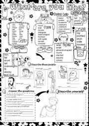 English worksheet: what are you like ?