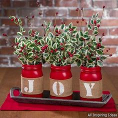 Interior plantings looks fab! If you think the same, simply checkout this lovely combo of hand made Christmas jars for indoor decoration. Shop Christmas gifts, gifts for festivals, gifts for her, gifts for him and more at best prices from Kraftly. Christmas Jars, All Things Christmas, Winter Christmas, Christmas Holidays, Christmas Cactus, Christmas Flowers, Christmas Kitchen, Family Holiday, Christmas Movies