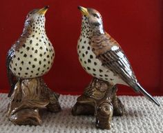 Pair Vtg Beswick Song Wood Thrush Birds Hand Painted Porcelain England | eBay
