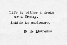 Life is eaither a dream or a frenzy, inside an enclosure. Author Quotes, Literary Quotes, Love Me Quotes, Life Quotes, D H Lawrence, Simple Sayings, Writers And Poets, Word Of The Day, Modernism