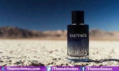 Top 10 Best Perfumes For Men In The World 2016
