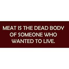 Vegetarianism essay topics purchasing