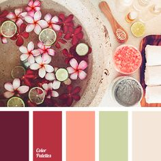 Gorgeous Palette Featuring Shades Of Rich Hibiscus Reds, Himalayan Sea Salt Pink, & Cool Aloe Green & Ivory Sandstone.
