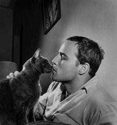 13 Awesome Celebrity Cat Guys Marlon Brando – The Frisky