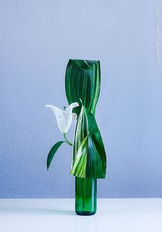 Free style arrangement, emphasizing leaf shape dynamics. Aspidistra, white lily, glass vase. Arrangement and photo by Katerina Mezhekova. Keisei ikebana class, November 18, 2012.