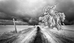 https://flic.kr/p/SHParN | Winter is coming | www.perezfotografia.es www.scapenature.com  Visita nuestro blog para leer artículos y aventuras: perezfotografia.wordpress.com/  Canon 6D + Canon 17-40 LucrOit Filter Holder + GND 0.9 Feldberg, Germany