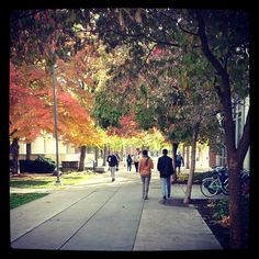Beautiful fall day on the Boise State campus!