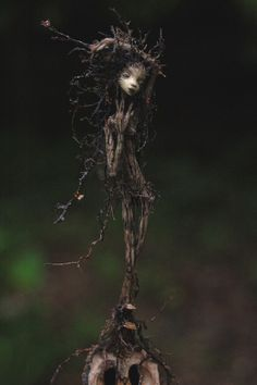 Delicate, little, wooden sprite called Rootling by chicorydell.
