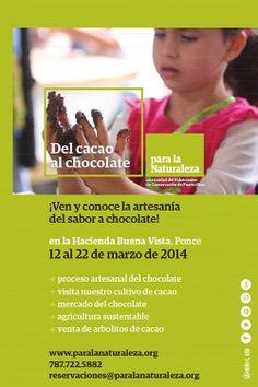 Si eres amante del chocolate, no te puedes perder este evento.