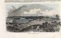 Wa Gov, Western Australia, Hand Coloring, Historical Photos, Past, Old Things, History, Pictures, Painting