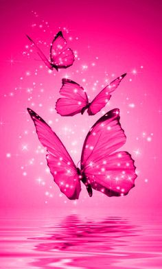Wallpapers Phone Pink Butterfly is the best high-resolution android wallpaper in You can make this wallpaper for your Android backgrounds, Tablet, Smartphones Screensavers and Mobile Phone Lock Screen Blue Butterfly Wallpaper, Butterfly Background, Butterfly Painting, Pink Wallpaper, Flower Wallpaper, Wallpaper Backgrounds, Iphone Wallpaper, Mobile Wallpaper, Butterfly Pictures