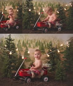 heidi hope backdrop rustic pine tree farm mini session holiday christmas camping 9