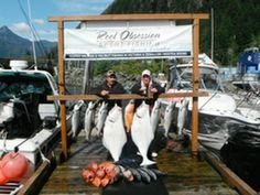 Canadian Fishing Charters from Reel Obession Sport Fishing. Pacific Salmon, Fishing Charters, Sport Fishing, Vancouver Island, Sports, Hs Sports, Sport
