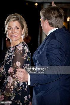 Dutch Royal Family Attends Kingsday Concert In Tilburg