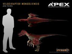 Velociraptor mongoliensis by Herschel-Hoffmeyer on deviantART