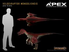 Velociraptor mongoliensis by Herschel-Hoffmeyer on deviantART: Dinosaur Photo, Dinosaur Art, Dinosaur Pictures, Prehistoric Wildlife, Prehistoric Creatures, Jurassic World, Animals Images, Animals And Pets, Feathered Dinosaurs
