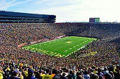 "University of Michigan - ""BIG HOUSE"""
